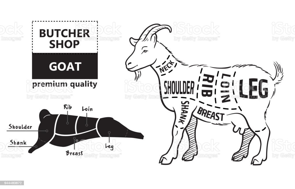 royalty free pork shoulder clip art  vector images  u0026 illustrations