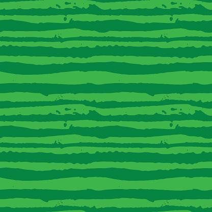 Vector Illustration green watermelon striped seamless hand drawn pattern.
