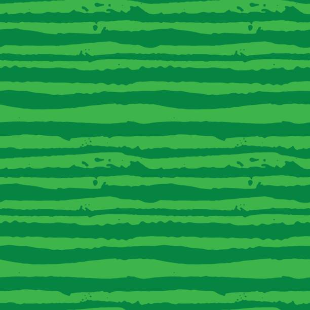 그림 그린 수 박 줄무늬 원활한 손으로 그린된 패턴 벡터. - 수박 stock illustrations