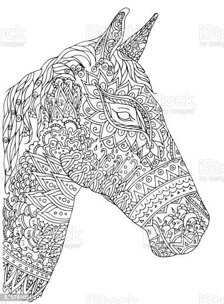 Vector illustration handdrawn horse on white background vector id878744854?b=1&k=6&m=878744854&s=612x612&h=owyjkunndsruih9nszngrh8kuuhsko2qdqz1zubpfbw=