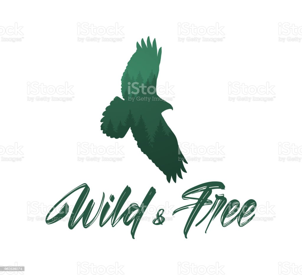 Vector illustration: Handwritten brush lettering of Wild and Free with forest silhouette of flying hawk - Royalty-free Alphabet stock vector