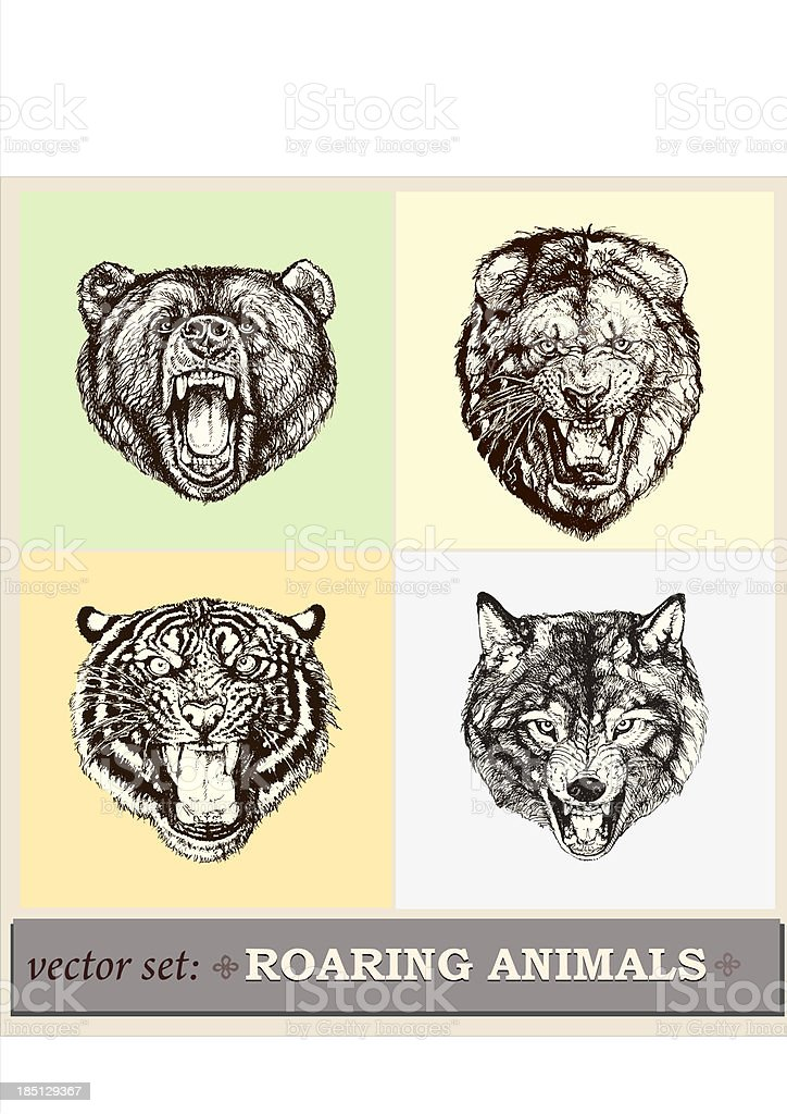 Vector illustration: heads of roaring animals vector art illustration