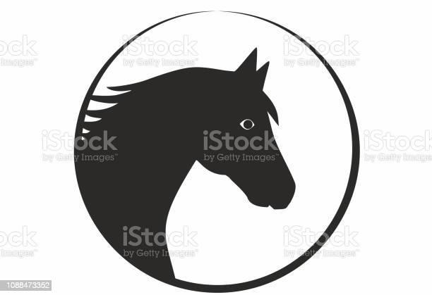 Vector illustration horse pony head in black and white in circle for vector id1088473352?b=1&k=6&m=1088473352&s=612x612&h=v c0jtidovnsb0wbxx9d0jw0r2weyuaksmaa0si9zwe=