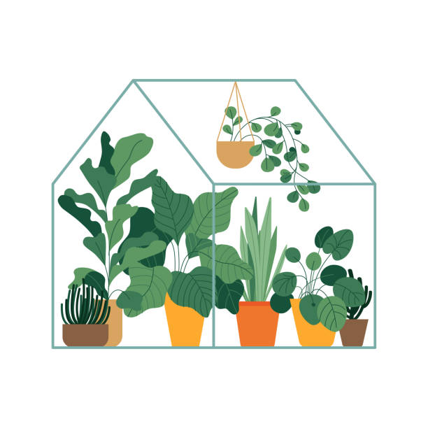 Vector illustration in flat simple style - greenhouse with plants vector art illustration