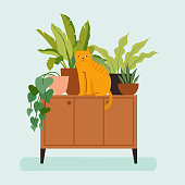 istock Vector illustration in flat trendy style - simple minimal interior with green decorative houseplants in pots and planters and cat - urban jungle illustration 1201618210
