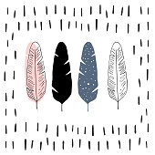 Vector illustration in Scandinavian style. Feather
