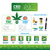 CBD vector illustration. Labeled medical THC cannabis benefits infographics. Psychoactive and healthy illness treatment canabidiol comparison diagram. Chemical structure formula, intake ways and uses.