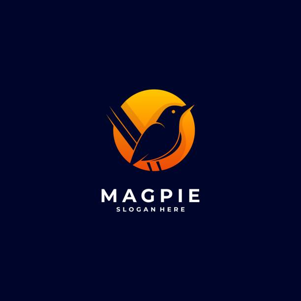 Vector Illustration Magpie Bird Silhouette Style. Vector Illustration Magpie Bird Silhouette Style. perching stock illustrations