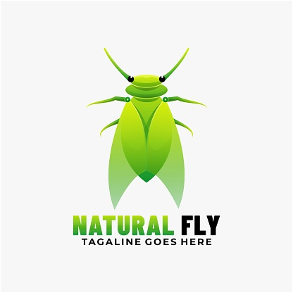 Vector Illustration Natural Fly Gradient Colorful Style.