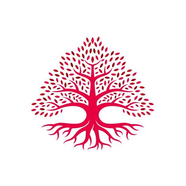 Vector Illustration Oak Tree Red Color Silhouette Style. Vector Illustration Oak Tree Red Color Silhouette Style. autumn silhouettes stock illustrations