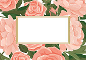 Vector illustration of a bright frame with a background of pink roses and peonies. Wedding decor, invitations and cards