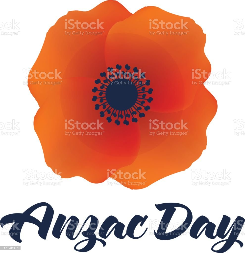 Vector illustration of a bright poppy flower remembrance day symbol vector illustration of a bright poppy flower remembrance day symbol royalty free stock mightylinksfo