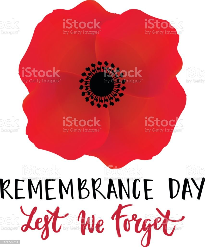 Vector illustration of a bright poppy flower. Remembrance day symbol. vector art illustration
