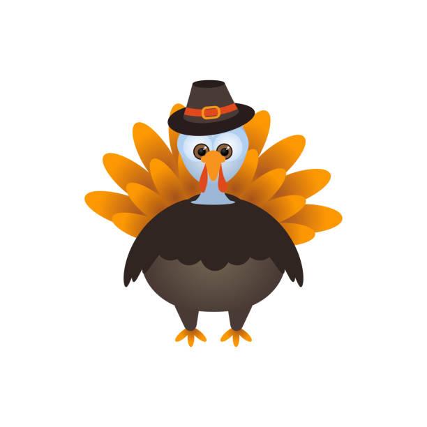 vector illustration of a cartoon thanksgiving turkey - turkey stock illustrations