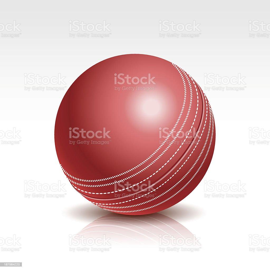 Vector Illustration of a Cricket Ball