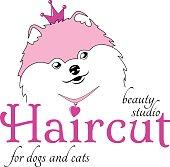 Vector illustration of a cute fairy princess dog of Pomeranian Spitz