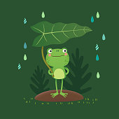 Vector illustration of a cute frog standing and holding a leaf on a rainy day.