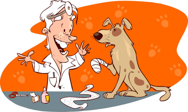 vector illustration of a  cute veterinarian and dog vector illustration of a  cute veterinarian and dog medico stock illustrations