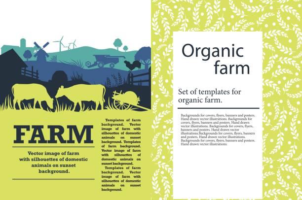 illustrations, cliparts, dessins animés et icônes de illustration vectorielle d'une ferme avec des silhouettes des vaches, des poules et des arbres. modèle agricole - agriculture