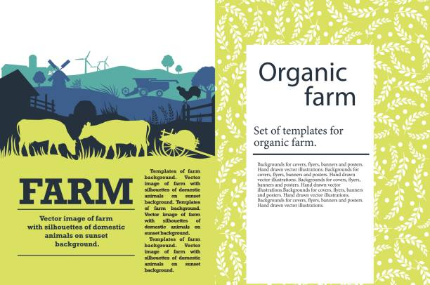 ilustrações de stock, clip art, desenhos animados e ícones de vector illustration of a farm with silhouettes of cows, chickens and trees. agricultural template - agricultura