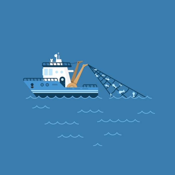 ilustrações de stock, clip art, desenhos animados e ícones de vector illustration of a fishing boat, fishing ship with a catch in the network sails on the sea - fishing boat