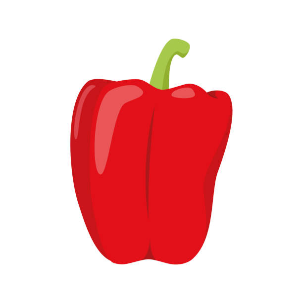 ilustrações de stock, clip art, desenhos animados e ícones de vector illustration of a funny red pepper in cartoon style. - red bell pepper isolated