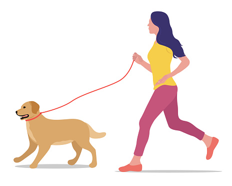 Vector illustration of a girl running with a dog on a leash isolated on a white background. Golden Labrador. Active lifestyle with pets