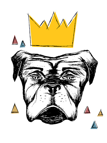 vector illustration of a hand drawn realistic dog with a crown