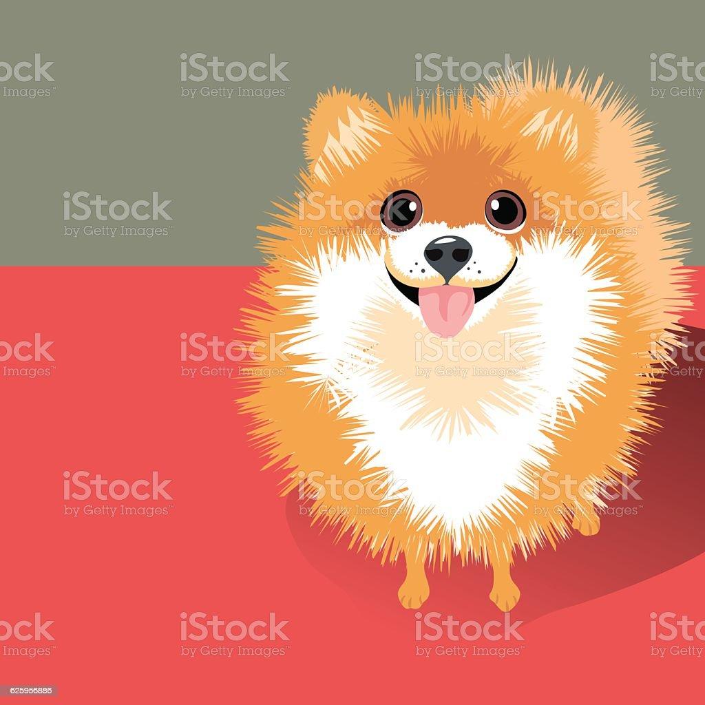 vector Illustration of a happy funny fluffy Pomeranian dog vector art illustration