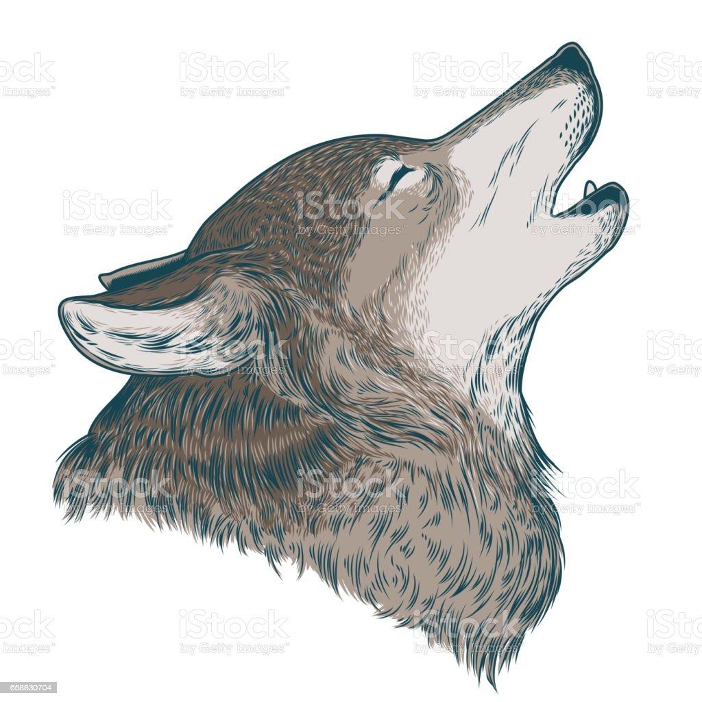 狼の遠吠えのベクトル イラスト 1人のベクターアート素材や画像を多数