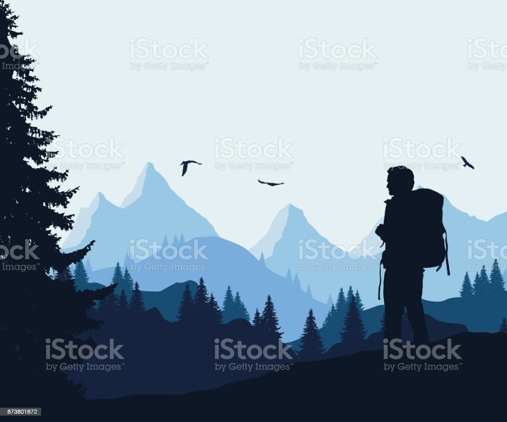 Vector illustration of a mountain landscape with a forest and flying birds and a tourist under a blue-gray sky vector art illustration
