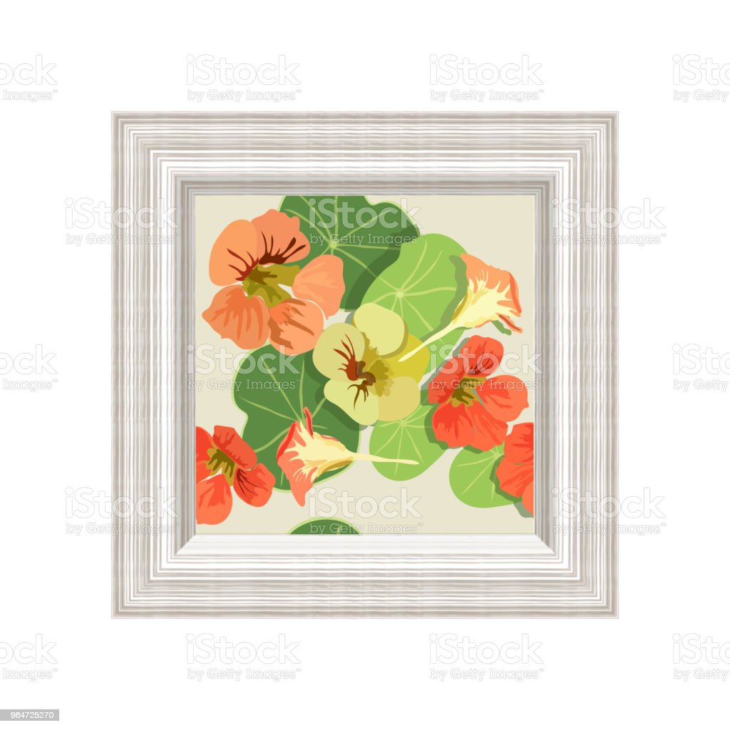 Vector illustration of a nasturtium flowers in a wall frame with an eco-swish imitation, isolated on a white background, in a frame arranged floral seamless pattern vector art illustration