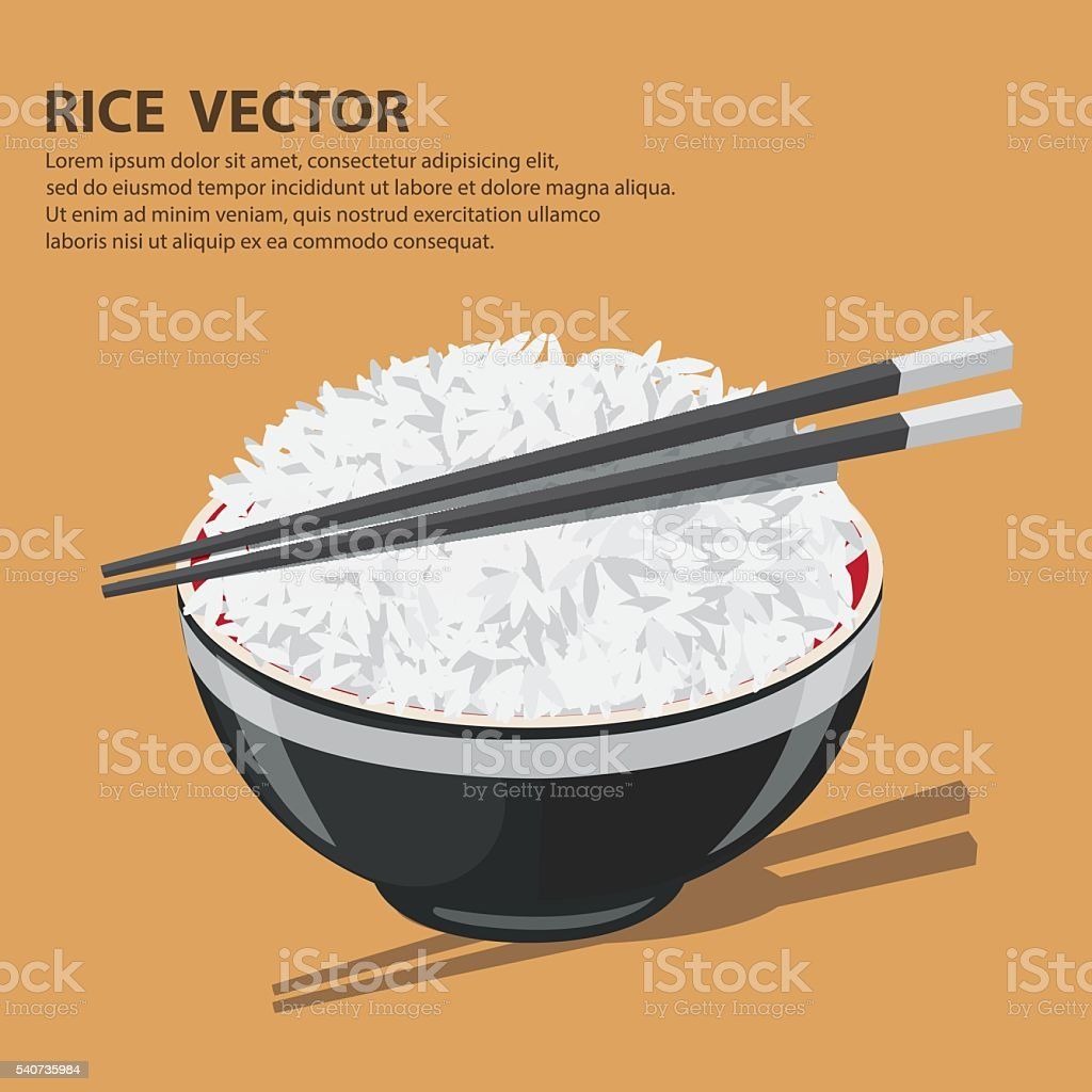Vector illustration of a Rice Bowl and chopstick. vector art illustration