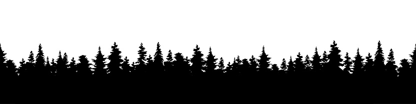 Vector illustration of a silhouette panorama of a coniferous forest. Forest background clipart
