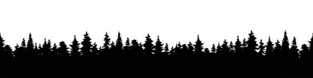 Vector illustration of a silhouette panorama of a coniferous forest. Forest background Vector illustration of a silhouette panorama of a coniferous forest. Detailed forest background pine tree stock illustrations