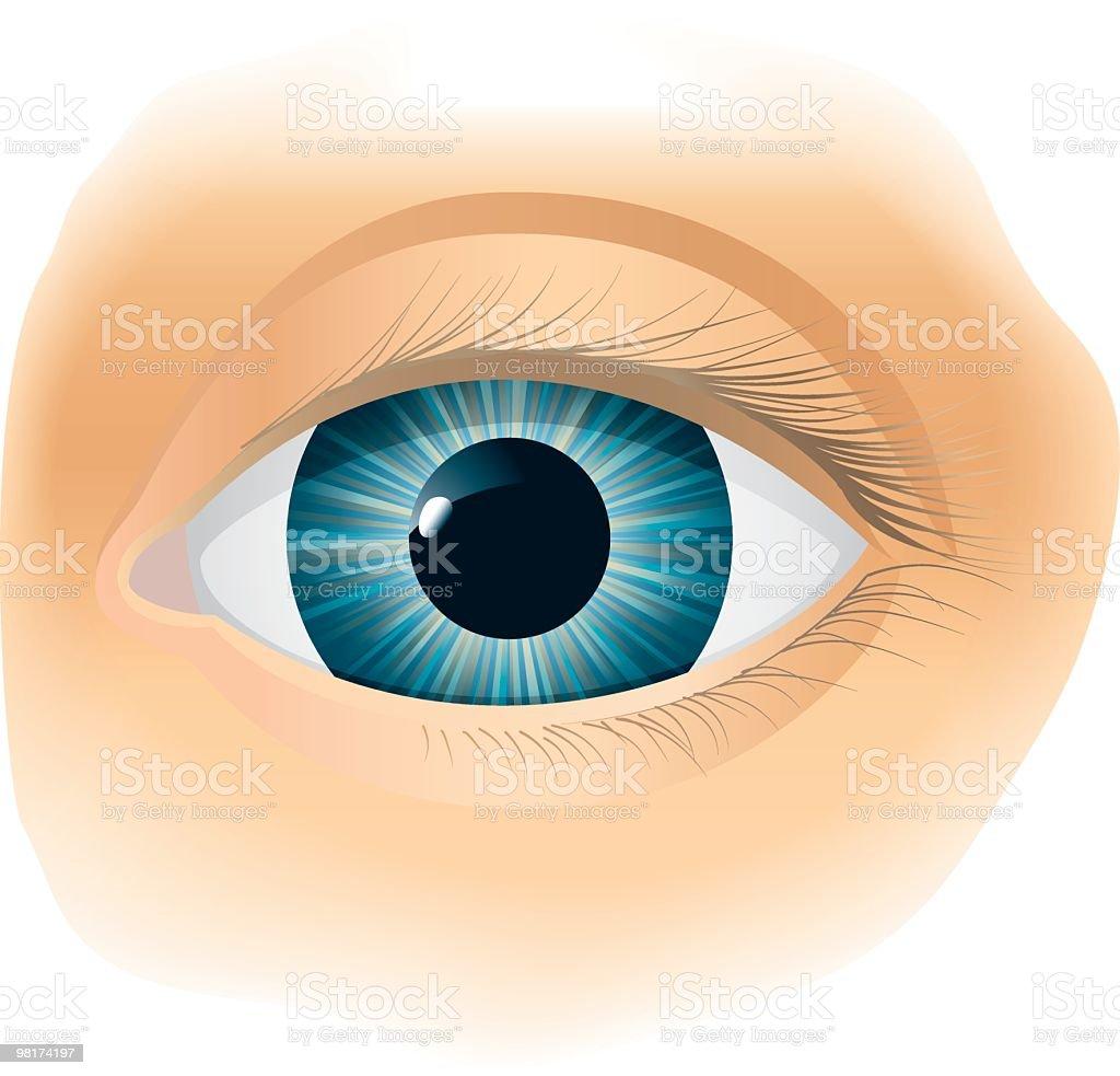 눈 royalty-free 눈 건강관리와 의술에 대한 스톡 벡터 아트 및 기타 이미지