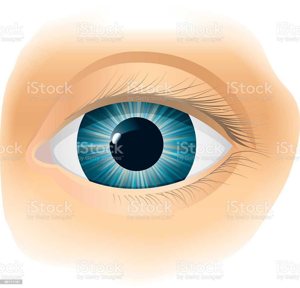 Vector illustration of a single blue eye over beige skin vector art illustration