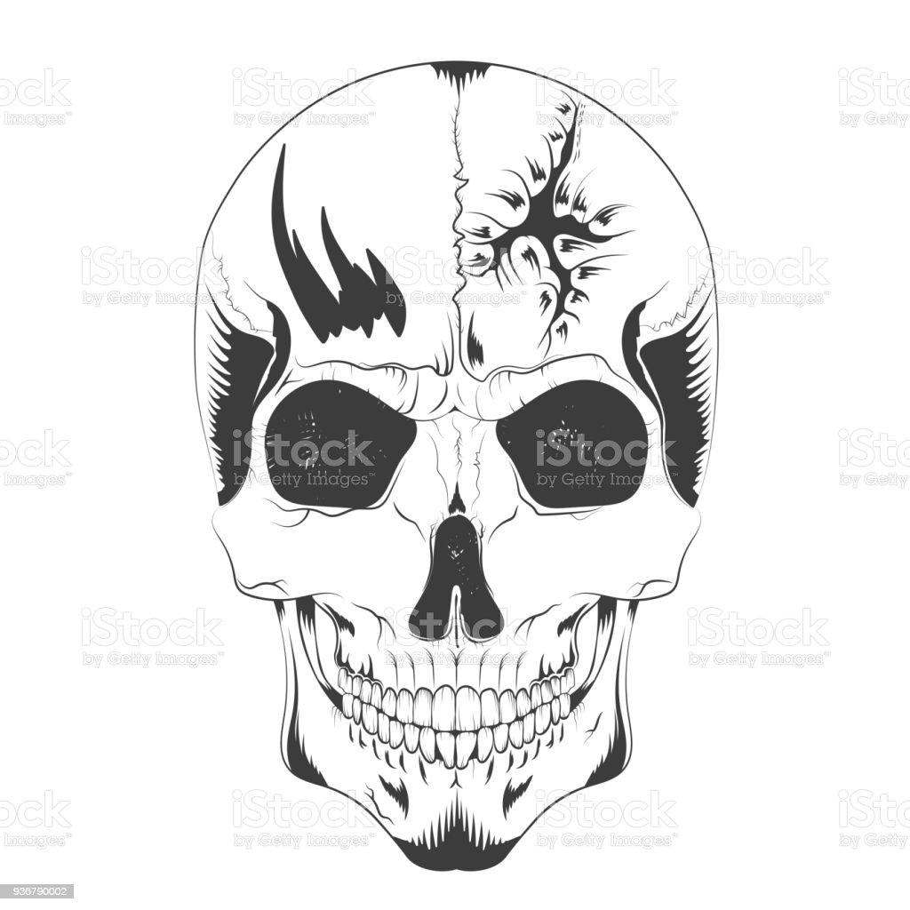 Vektorillustration Einer Schädelskizze Mit Einem Loch Im Kopf ...