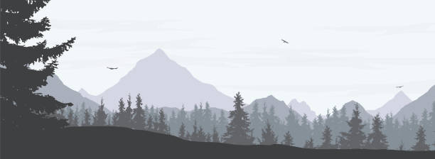 vector illustration of a snowy winter mountain landscape with coniferous forest, valley and flying birds in a gray sky with clouds - widescreen vector - mountains in mist stock illustrations