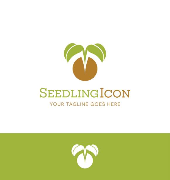 vector illustration of a tiny plant emerging from seed. symbol for plant nursery, organic farming, vegan, gardening vector art illustration