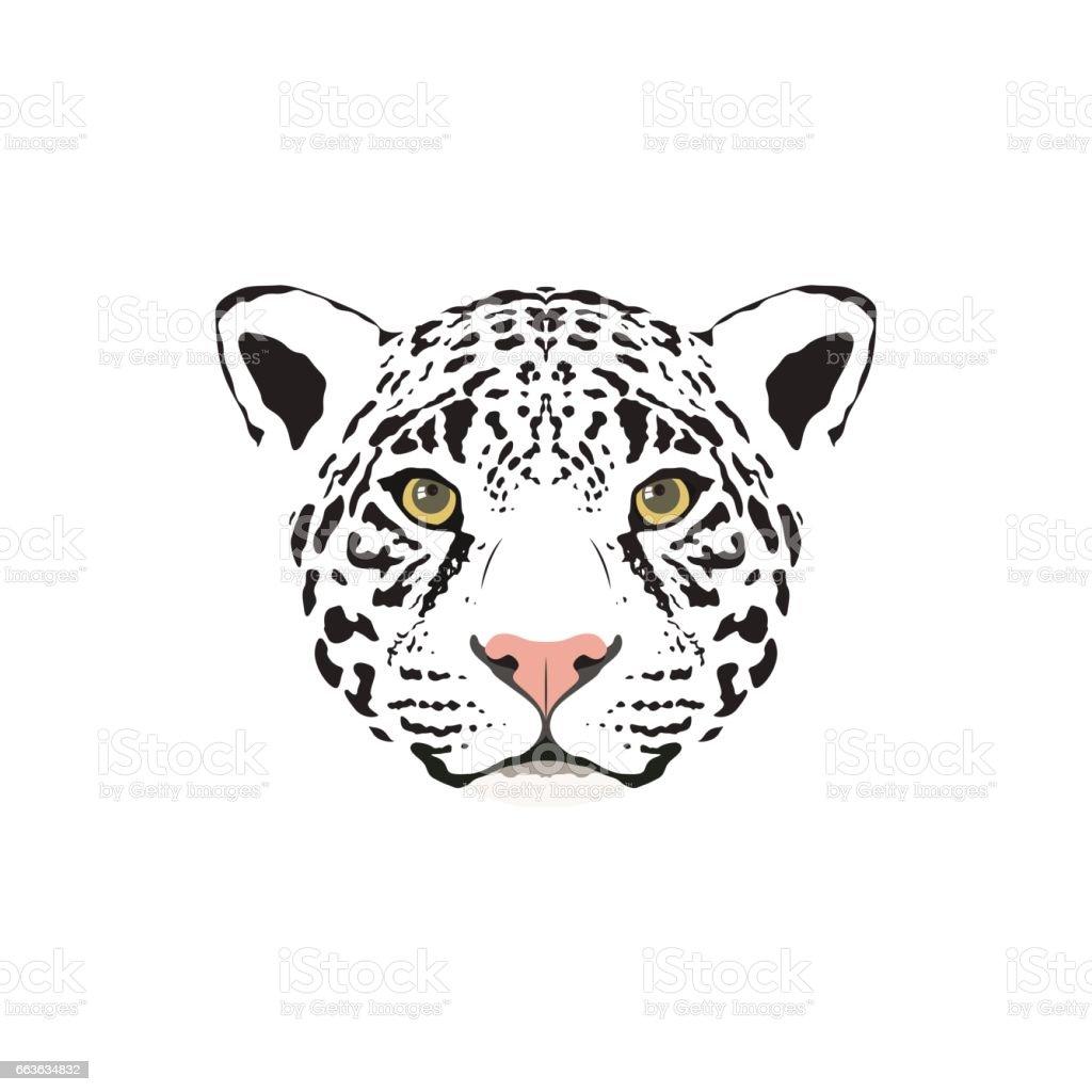 Vector Illustration Of A White Jaguar Head Suitable As Tattoo Team