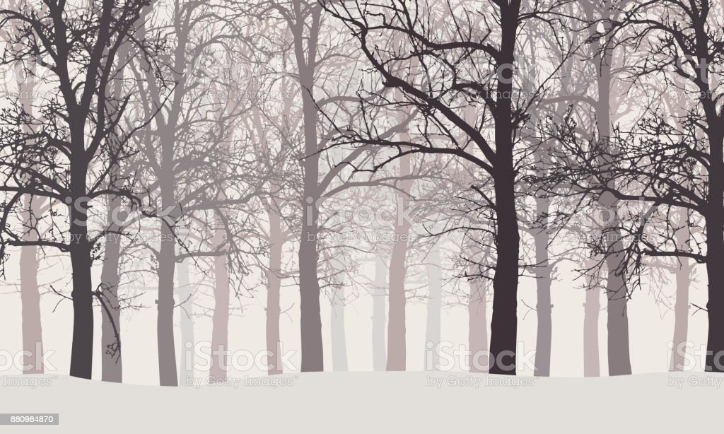 Vector illustration of a winter forest without leaves with snow and hazy backgrounds - illustrazione arte vettoriale