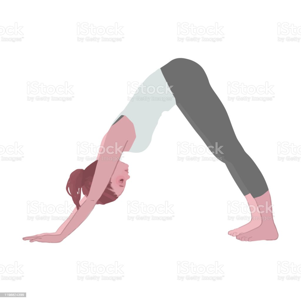 Vector Illustration Of A Woman Doing A Down Dog Yoga Pose Stock ...