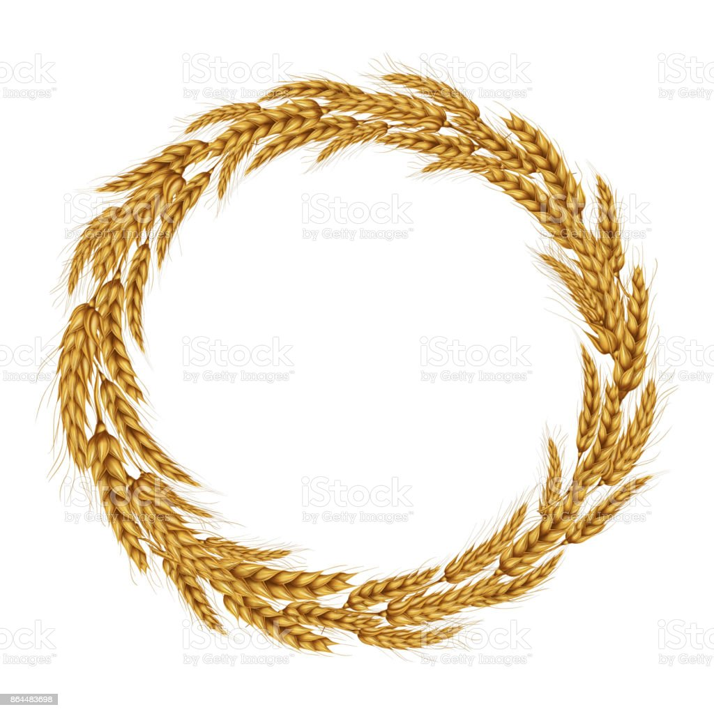Vector illustration of a wreath of wheat spikelets. vector art illustration