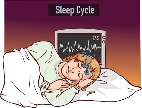 vector illustration of a young girl sleeping and Sleep cycle graph