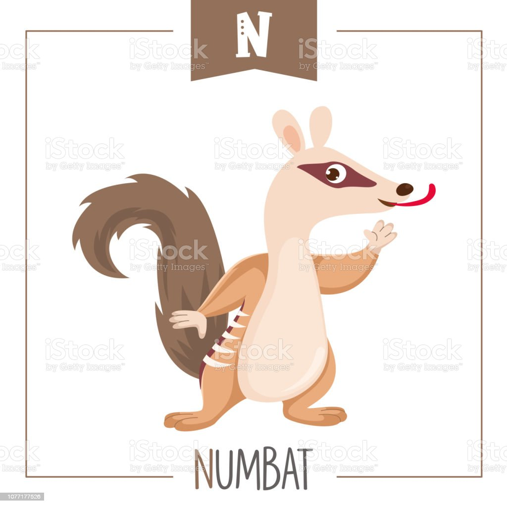 Image of: Kids Vector Illustration Of Alphabet Letter And Numbat Illustration Istock Vector Illustration Of Alphabet Letter And Numbat Stock Vector Art
