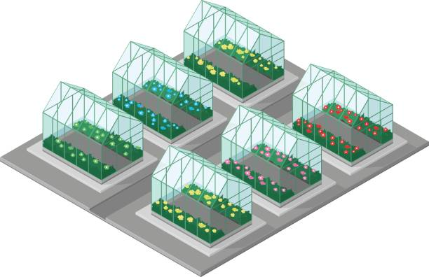 Vector illustration of an Isometric garden center. Isometric Garden Center. several greenhouses growing different plants. garden center stock illustrations