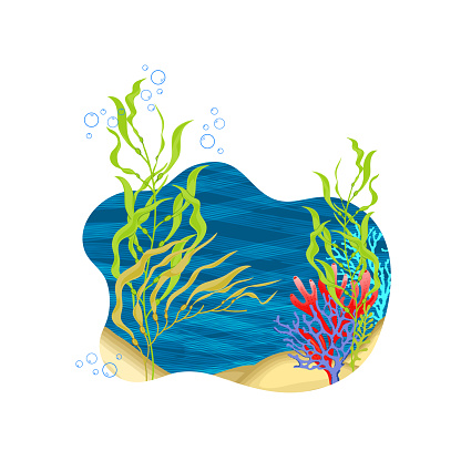 Vector illustration of an undersea landscape,Set of kelps and some colorful corals.