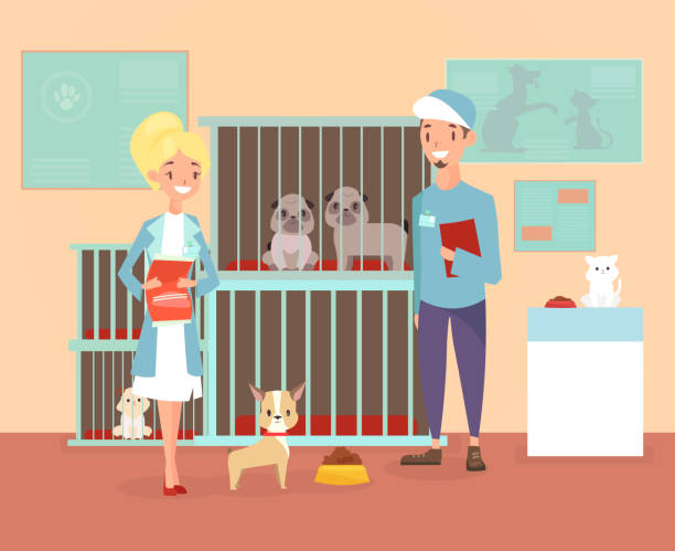Vector illustration of animal shelter with volunteers characters with dogs and cat. Shelter, adopt pets concept. Happy pets in shelter with veterinars in cartoon flat style. Vector illustration of animal shelter with volunteers characters with dogs and cat. Shelter, adopt pets concept. Happy pets in shelter with veterinars in cartoon flat style sheltering stock illustrations