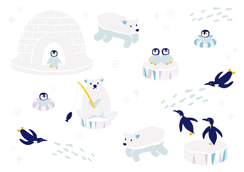 Vector illustration of antarctic animals
